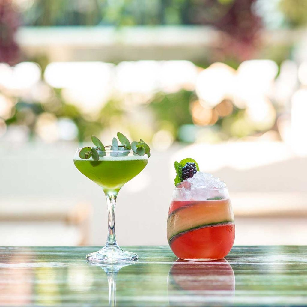Image of two cocktails at the Fernery Rooftop for Restaurant Marketing